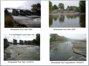 dams shiawassee