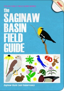 saginaw basin field guide cover
