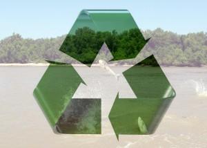 asian-carp-recycle-logo