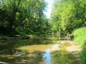 Szok preserve midland county