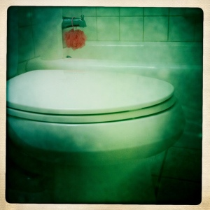 commode toilet septic