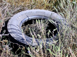 scrap tire mosquitoes