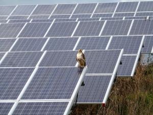 solar arrays dte surcharge
