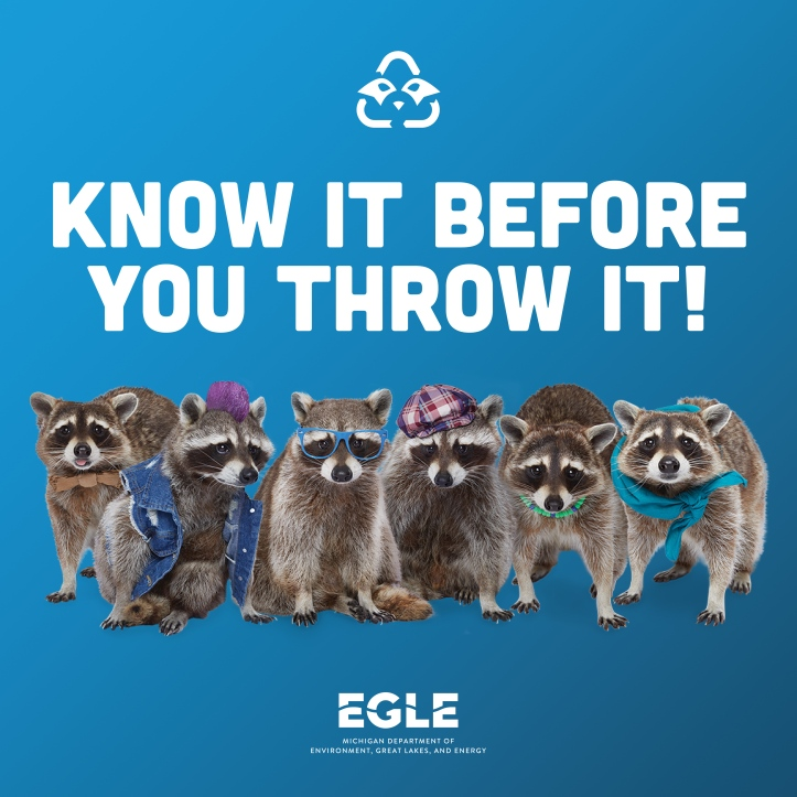 recycling raccoons education campaign